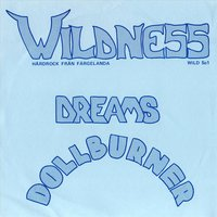 Dreams — Wildness