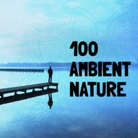 100 Ambient Nature — Sounds Of Nature Relaxation