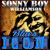 Blues Icon: Sonny Boy Williamson — Sonny Boy Williamson