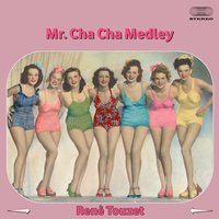 Mr. Cha Cha Medley: Tea For Two / Mi Amor Se Fue / Andalucia / Stormy Weather Que Emocion / La Criticona / Mulata / Red Dress / Perfidia / Julie Is Her Name / Mi Guajira — Rene Touzet