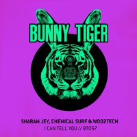 I Can Tell You — Sharam Jey, Chemical Surf, Woo2tech