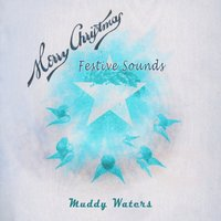 Festive Sounds — Muddy Waters