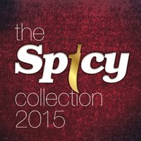 The Spicy Collection 2015 — сборник