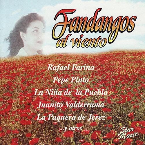 Gordito De Fernan Nuñez Madre Andalucia