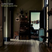 What Is Love For — Justin Currie