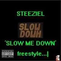 Slow Me Down Freestyle — Steeziel