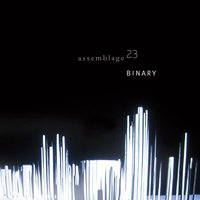 Binary — Assemblage 23
