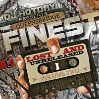 DJ Hotday Present Lost & Unreleased V.2 — Queensbridge Finest