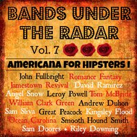 Bands Under the Radar, Vol. 7: Americana for Hipsters I — сборник