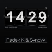 Something About Control — Radek K, Syndyk