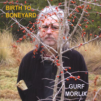 Birth to Boneyard — Gurf Morlix