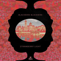 Strawberry Light — Blackbird Blackbird
