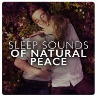 Sleep Sounds of Natural Peace — Sleep Songs with Nature Sounds