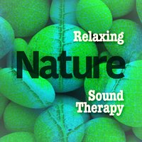 Relaxing Nature Sound Therapy — Relaxing and Healing Sounds of Nature