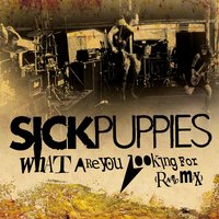 What Are You Looking For — Sick Puppies