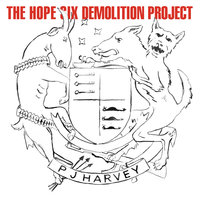 The Hope Six Demolition Project — PJ Harvey