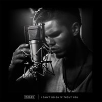 I Can't Go On Without You — Kaleo