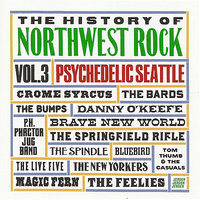The History of Northwest Rock, Vol 3, Psychedelic Seattle — сборник