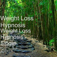 Weight Loss Hypnosis — Weight Loss Hypnosis