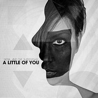 A Little of You - Single — Nats
