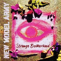 Strange Brotherhood — New Model Army