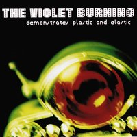 Demonstrates Plastic and Elastic — The Violet Burning