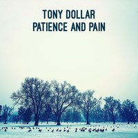 Patience and Pain — Tony Dollar