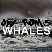 Whales — Jay Rom's