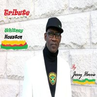 Tribute to Whitney Houston — Jerry Harris