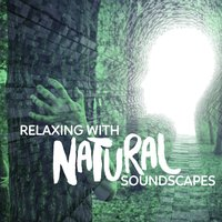 Relaxing with Natural Soundscapes — Relaxing Nature Ambience