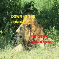 Down in the Jungle — Mr Gerry Mandering