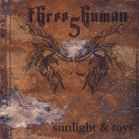 Sunlight and Toys — Three5Human