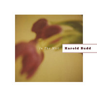 In The Mist — Harold Budd