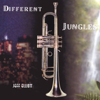 Different Jungles — Jeff Elliott