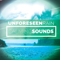 Unforeseen Rain: Calming Sounds — Natural Rain Sounds