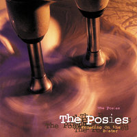 Frosting On The Beater — The Posies