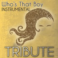 Who's That Boy (Demi Lovato feat. Dev Tribute) - Single Instrumental — Party Starters