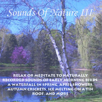Sounds Of Nature 3 — Perry Rotwein