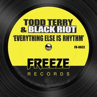 Everything Else is Rhythm — Todd Terry, Black Riot