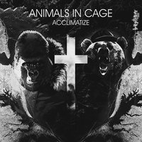 Acclimatize — Animals In Cage