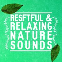 Restful & Relaxing Nature Sounds — Rest & Relax Nature Sounds Artists, Sleep Sounds of Nature, Sonidos de la naturaleza Relajacion, Rest & Relax Nature Sounds Artists|Sleep Sounds of Nature|Sonidos de la naturaleza Relajacion