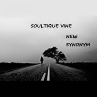 New Synonym — Soultique Vine