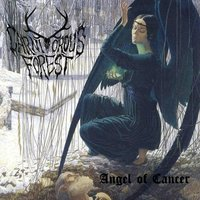 Angel of Cancer — Carnivorous Forest