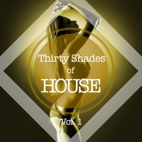 Thirty Shades of House, Vol. 1 — сборник