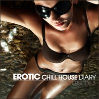 Erotic Chill House Diary — сборник