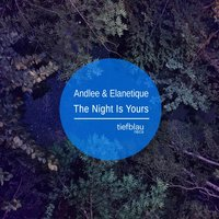 The Night Is Yours — Andlee, Elanetique