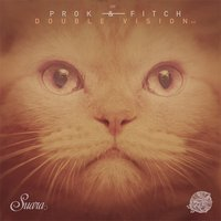 Double Vision — Prok & Fitch