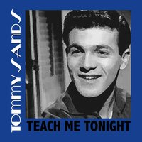 Teach Me Tonight — Tommy Sands
