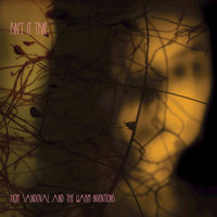 Isn't It True — Hope Sandoval & The Warm Inventions