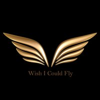 Wish I Could Fly — Dan McTaggart
